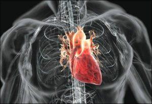 Болит сердце у человека