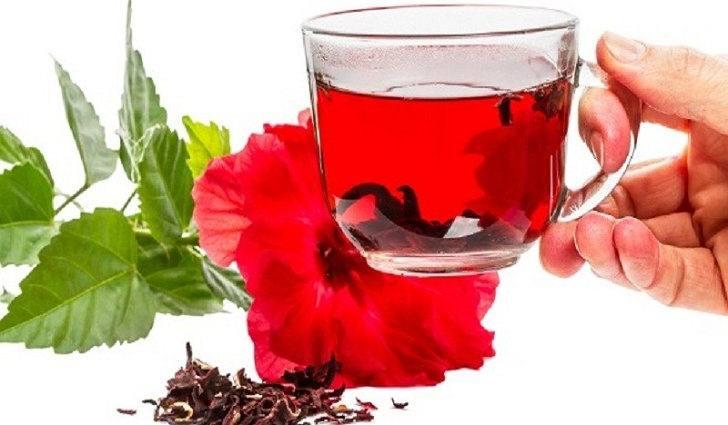Лечебные свойства чая каркаде
