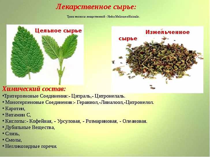 Химический состав лечебного растения