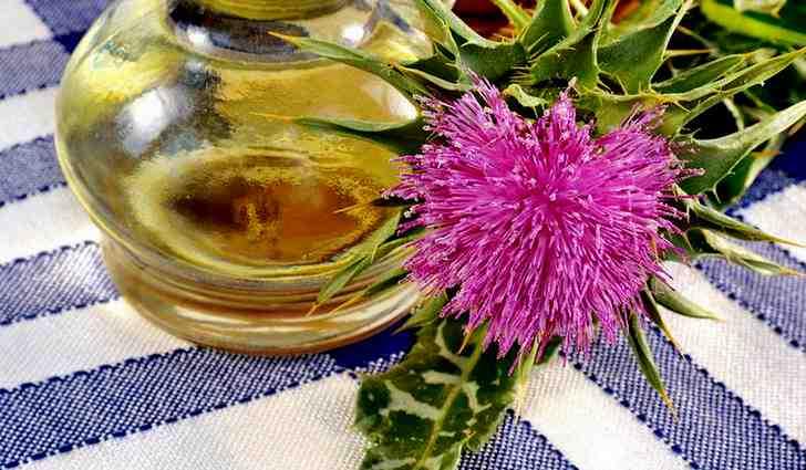 Как лечить маслом расторопши