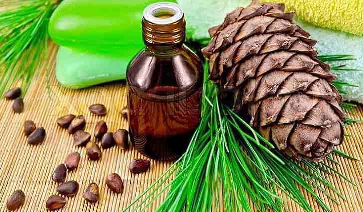 Лечение кедровым орехом
