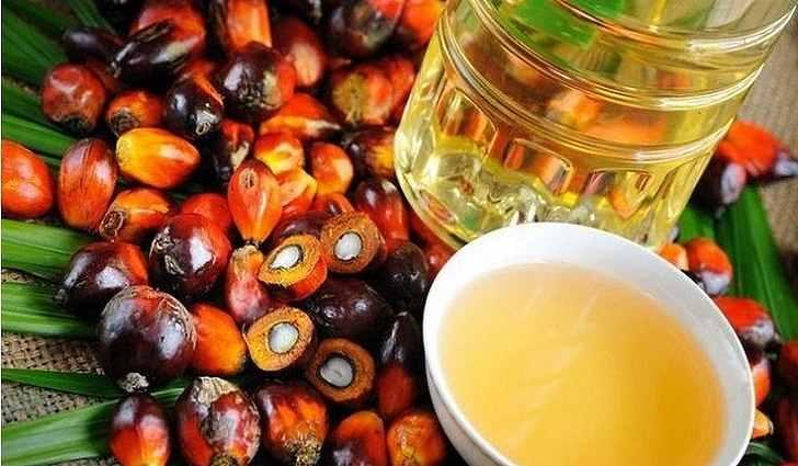 Пальмовое масло богато витамином e