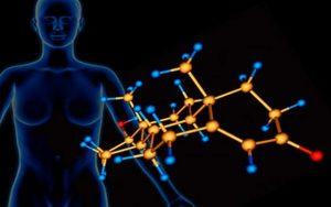 gormony cheloveka