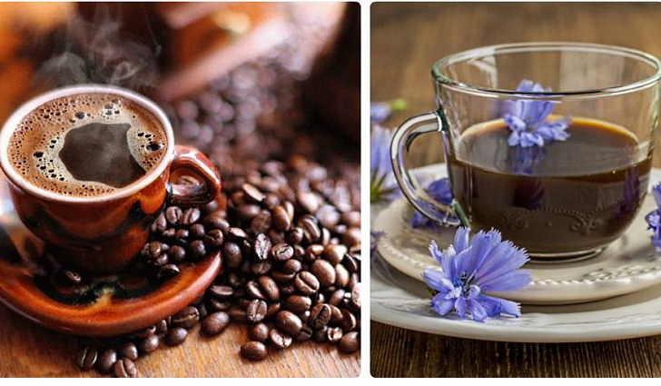 Трава цикорий или кофе