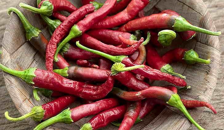 Красный горький перец применение в народной медицине
