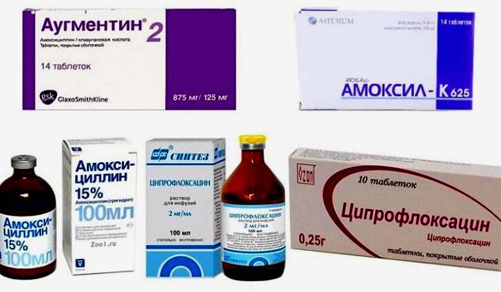 Препараты для лечения отита у взрослых