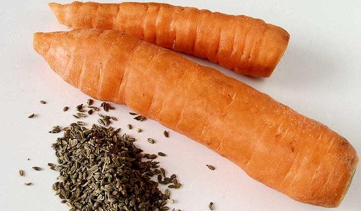 семена моркови спасли от стенокардии