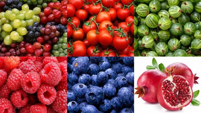 виноград, томаты, малина, крыжовник